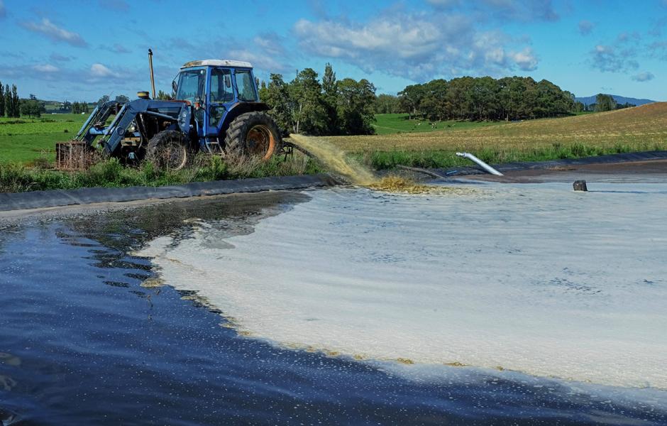 Dairy Lagoon - Sludge Reduction